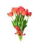 Букет красных тюльпанов при красная лента изолированная на белизне Стоковые Фото