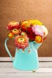 Букет красочных персидских цветков лютика Стоковое Изображение RF