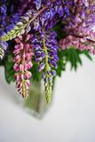 Букет красочных lupines в стеклянной вазе на белизне r стоковая фотография rf