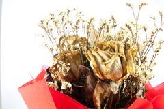 Букет крупного плана высушенной изолированной розы Стоковое Изображение RF