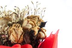 Букет крупного плана высушенной изолированной розы Стоковая Фотография