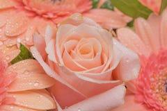 Букет крупного плана цветков Стоковые Изображения