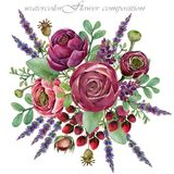 Букет лютика цветка Состав акварели флористический Стоковое Фото