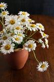 Букет маргаритки в цветках темной предпосылки вазы глины Брайна белых Стоковые Фотографии RF