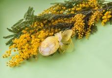 Букет мимозы и пасхального яйца Стоковые Фото