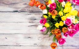 Букет много розовых тюльпанов желтеет красный цвет и белизну и пинк Стоковое Изображение RF