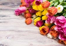 Букет много розовых тюльпанов желтеет красный цвет и белизну и пинк Стоковое фото RF