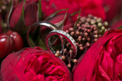 Букет обручальных колец и роз Стоковое Изображение