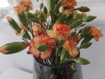 Букет оранжевых гвоздик брызга стоковая фотография rf