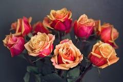 Букет оранжевых и желтых роз против серой текстурированной предпосылки стены Стоковое Изображение RF