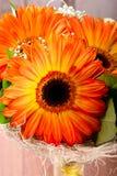 Букет 3 оранжевых gerberas в бутылке Стоковое фото RF