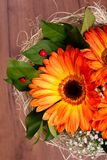 Букет оранжевых gerberas и немногих ladybugs Стоковые Изображения RF