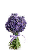 Букет отрезка цветков лаванды Стоковые Фото