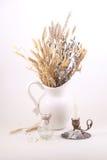 Букет от ветвей вербы и конусов в белом кувшине на a Стоковая Фотография RF