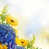 Букет от голубых гортензий Стоковые Фотографии RF