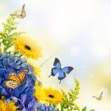 Букет от голубых гортензий и бабочки Стоковое Изображение