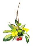 Букет от цветков, ягод и верб pussy разветвляет Стоковое Изображение