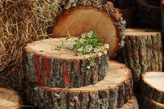 Букет от camomiles на stub в саде Стоковое фото RF
