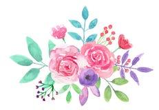 Букет пинка цветочной композиции акварели флористической покрашенный рукой Стоковое фото RF