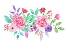 Букет пинка цветочной композиции акварели флористической фиолетовой покрашенный рукой Стоковые Фото