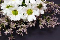 Букет полевых цветков белых стоцвета и limonium на темной предпосылке стоковое изображение
