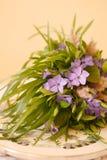 Букет полевого цветка весны Стоковое Изображение RF