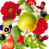 Букет, предпосылки, природа, цветок, красота, завод Стоковое Фото