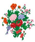Букет при красная роза, маки, bluebells, полевые цветки и листья зеленого цвета изолированные на белизне Стоковые Изображения