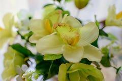 букет различных красивых цветков Стоковые Изображения RF