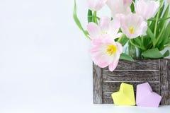 Букет розовых тюльпанов в деревянной коробке и 2 бумажных сердцах желтого цвета и цвета сирени на белой предпосылке стоковые изображения