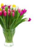 Букет розовых, фиолетовых и белых тюльпанов Стоковые Фотографии RF