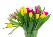 Букет розовых, фиолетовых и белых тюльпанов Стоковое фото RF