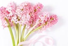 Букет розовых цветков гиацинта Стоковые Изображения RF