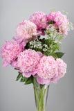 Букет розовых peonies Стоковая Фотография
