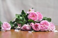 Букет роз чая Стоковое Изображение