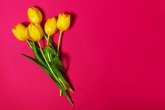 Букет свежих красивых желтых тюльпанов на розовом красочном Backgr Стоковое Изображение