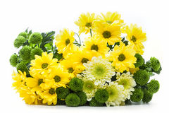 Букет свежих цветков весны изолированных на белизне Стоковое Изображение RF