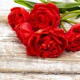 Букет свежих цветков тюльпана весны Стоковые Фото