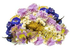 Букет сине-розов-желт-белых цветков на изолированной белой предпосылке с путем клиппирования Отсутствие теней closeup Гвоздичные  Стоковое Изображение RF