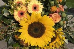 Букет солнцецвета Стоковая Фотография