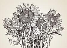 Букет солнцецветов иллюстрация штока