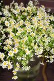 Букет стоцвета в стеклянной вазе Стоковые Изображения RF