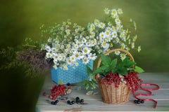 Букет стоцвета и смородины Стоковое Изображение RF