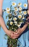 Букет стоцветов в руках девушки Стоковые Фото