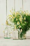 Букет стоцветов стоковая фотография rf