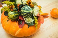 Букет тыкв, цветков и листьев Стоковые Фотографии RF