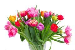 Букет тюльпанов и daffodils Стоковое Изображение RF