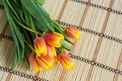 Букет тюльпанов Стоковые Фото