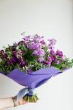 Букет фиолетового Mattioli, упакованный в фиолетовой бумаге На белой предпосылке флористическо стоковая фотография