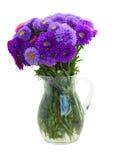 Букет фиолетовых цветков астры стоковые изображения rf